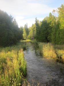 Rieboldt's Creek flowing from Mud Lake to Moonlight Bay in Door County.